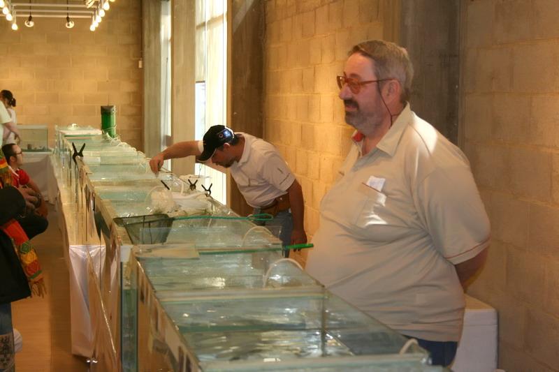 Photos de la bourse d'Arlon 2008 Denis